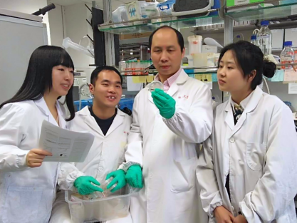 Researcher from Dr. Lijun Kang's Lab Discovered Mechanism of the Deafness Genes TMCs
